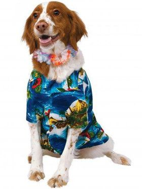 Luau Jacket Lei Pet Costume