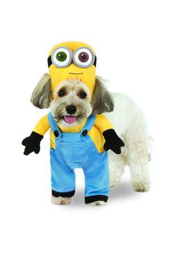 Minion Bob Arms Costume for Pet