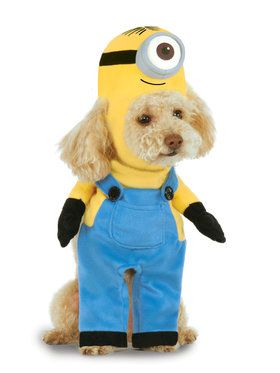 Minion Stuart Arms Pet Costume