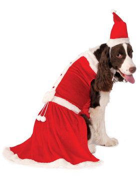 Big Dog's Santa's Sweetie Costume for Pets