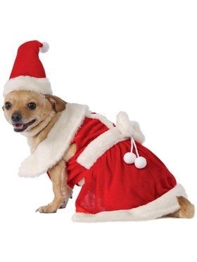 Mrs. Claus Pet Costume