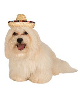 Multi-Colored Mexican Pet Sombrero