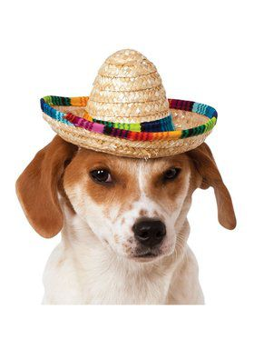 Multi-colored Sombrero Hat