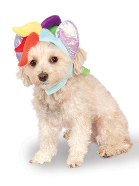 My Little Pony Rainbow Dash Hood Pet Costume