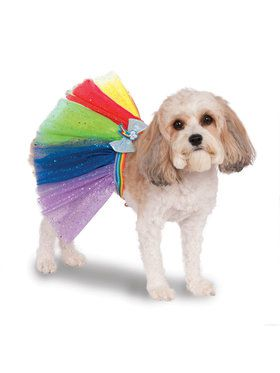 My Little Pony Rainbow Dash Tutu Pet Costume