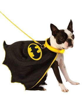Pet Batman Pet Cape with Light up Collar and Leash Pet Costume