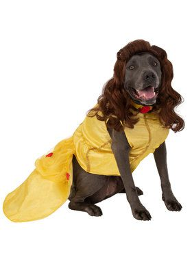 Pet Big Dogs Beauty and the Beast Belle Costume