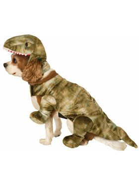 Pet Dinosaur Costume