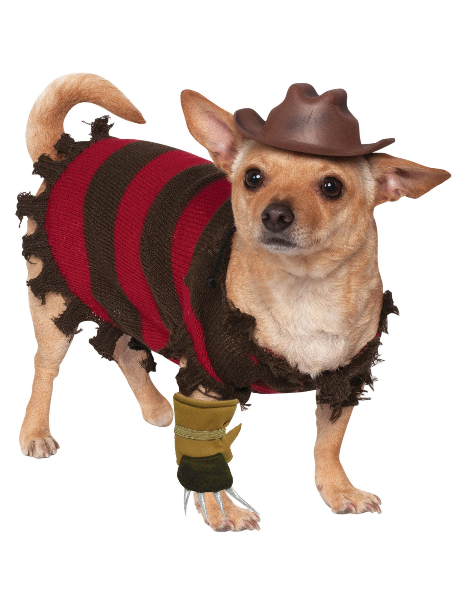 pet freddy krueger costume - dog and cat costumes for 2018