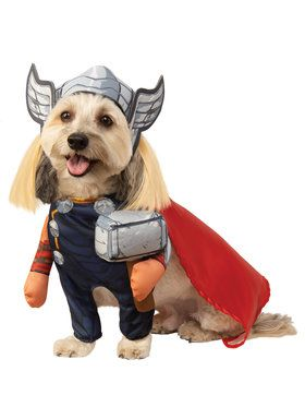Pet Marvel Walking Thor Costume