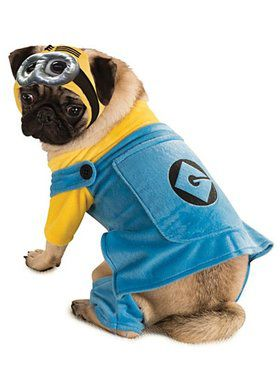 Pet Minion Costume