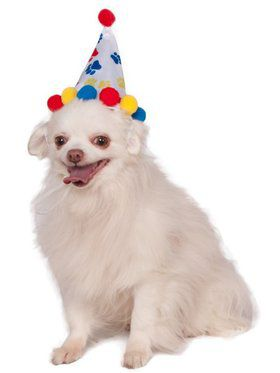 Paw Print Birthday Hat for Pet
