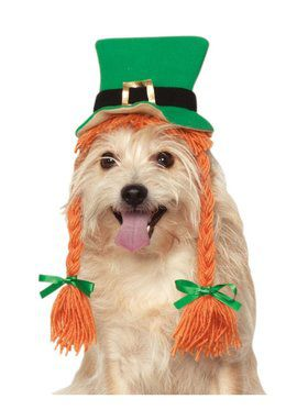 Pet St. Patrick's Day Hat With Braids