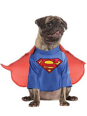 Pet Superman Costume