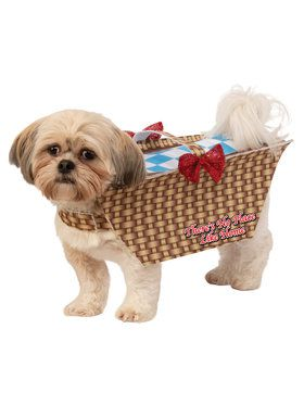 Pet Toto Basket Pet Costume