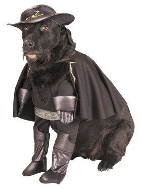 Pet Zorro Costume