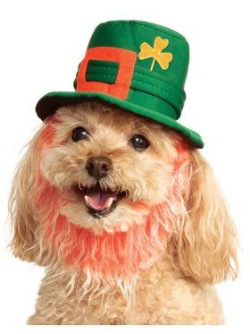 Pets St. Patrick's Day Hat with Beard
