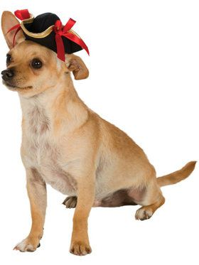 Pirate Dog Hat
