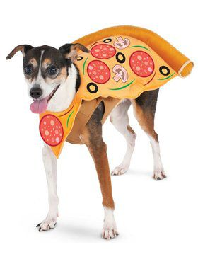 Pizza Slice Costume for Pet