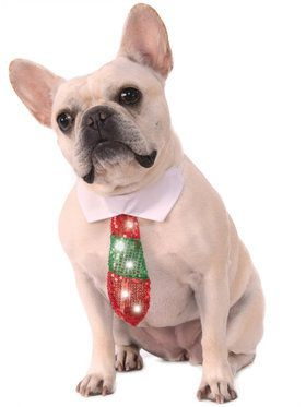 Reversible Holiday Tie Costume for Pets