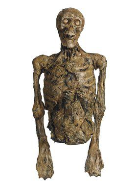 Rotten Skeleton Torso Large Decoration