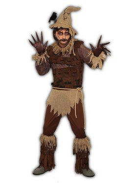 Rustic Scarecrow Adult Male Costume