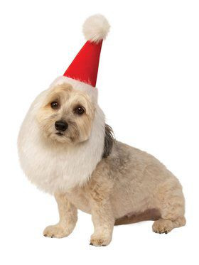 Santa Hat with Beard Costume for Pets