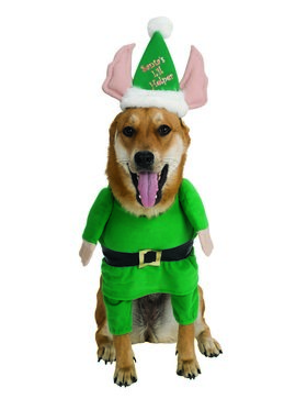 Santa's Helper Dog Pet Costume