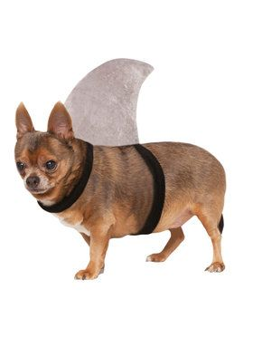 Shark Fin Costume for Pet
