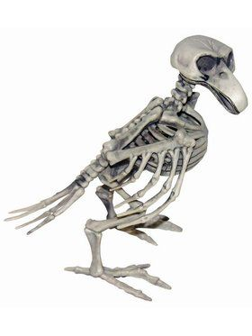 Skeleton Bird Prop