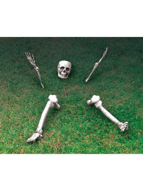Groundbreaking Skeleton Decoration