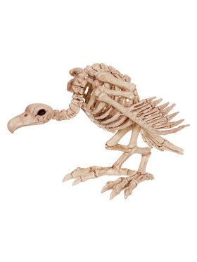 Skeleton Vulture Horror Prop