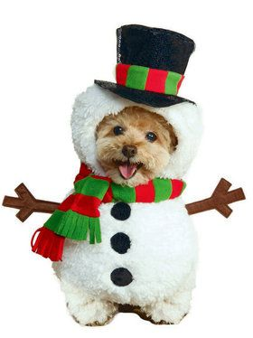 Snowman Pet Dog Costume