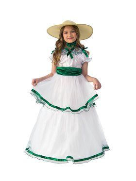 Beautiful Southern Belle Costume for Women