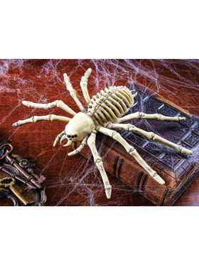 Spider Skeleton Prop