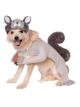 Squirrel Pet Costume