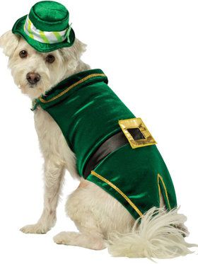 St. Patty's Leprechaun Pet Costume