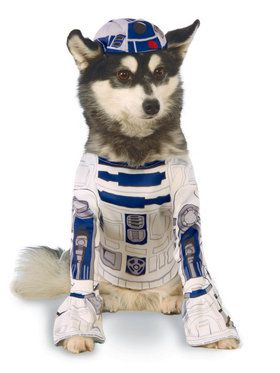 Star Wars Pet R2-D2 Pet Classic Costume