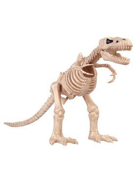 T-rex Skeleton Prop Decoration