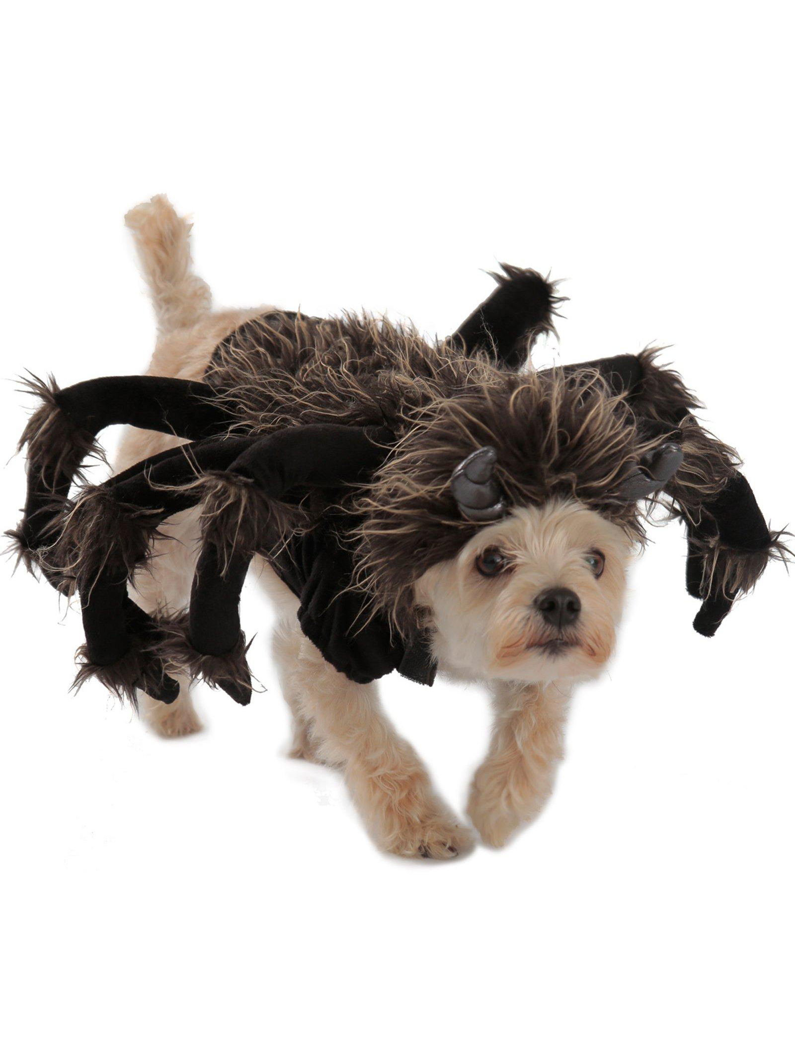 Spider Halloween Costume For Dogs PP14294-L