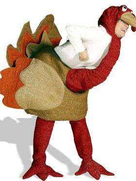 Fun Turkey Costume