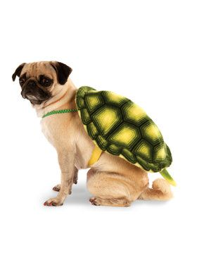 Turtle Shell Pet Costume