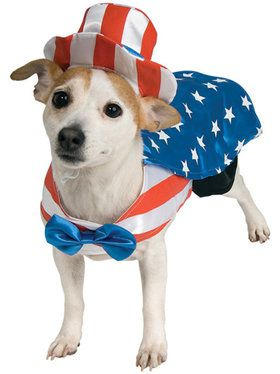 Uncle Sam Pet Costume Small