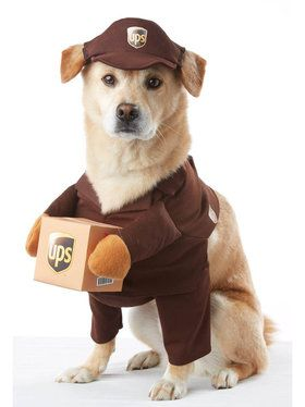 UPS Worker Costume For Pets