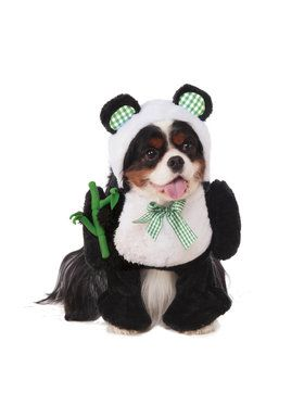 Walking Panda Pet Costume for Halloween
