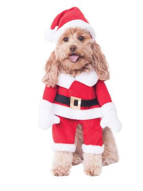 Walking Santa Pet Costume