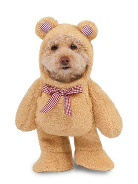 Teddy Bear Costume for Pet