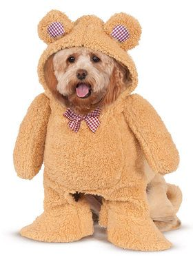 Walking Teddy Bear Costume For Pets