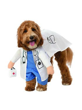 Walking Vet Costume for Pet