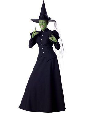 Wicked Witch Elite Adult Costume